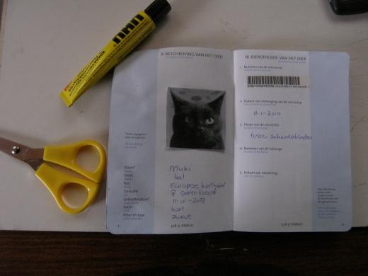 The Cat Passportt